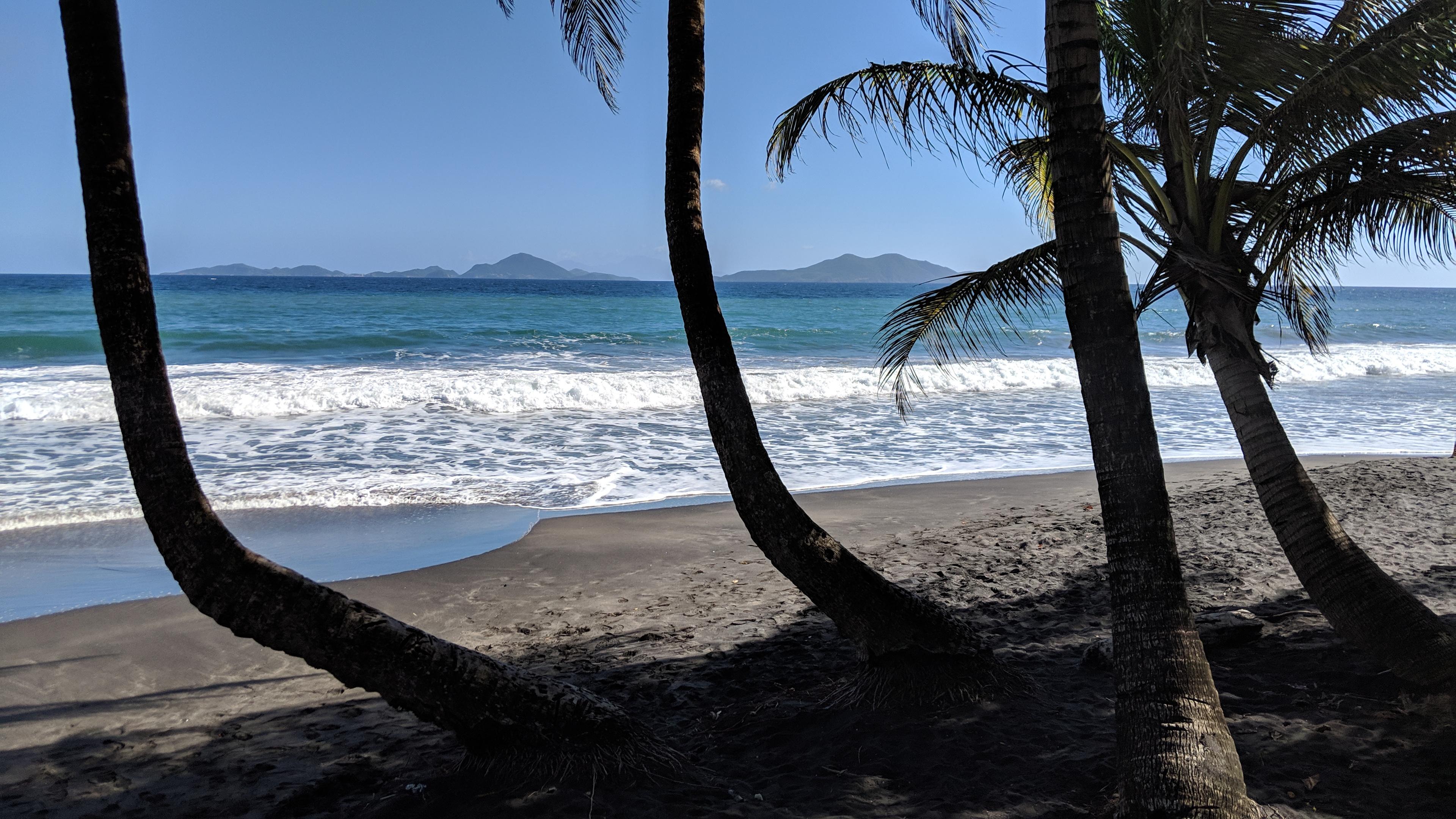 Plage mit Palmen und den Isles des Saintes